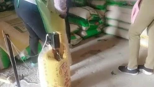 以后还敢买超市的精装大米吗?这可是我亲眼所见!