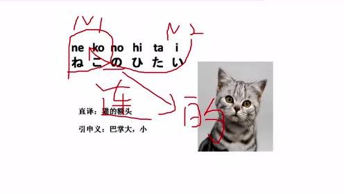日语学习教程:日语0基础怎么学初学者怎么学习日语日语五十音图