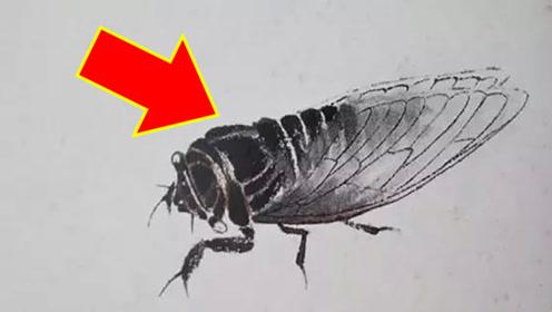 齐白石画的一只蝉,凭什么卖到8亿?专家放大后发现不简单!