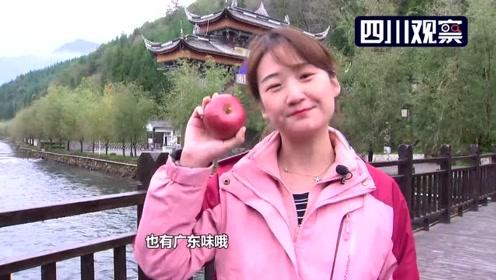 越西的苹果里竟有广东味儿?让我们来一探究竟