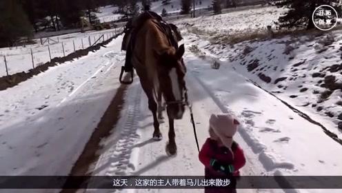 小女孩牵马在雪地上行走,下一秒马的举动让人暖心,镜头记录