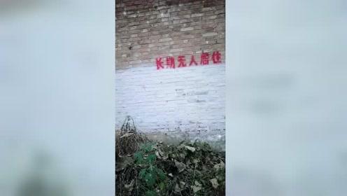 为啥只有村里的房子没人住会被喷字?而城里的却不会