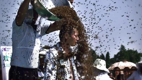 养蜂人身经百战被蛰无数次,百毒不侵如段誉,浑身蜜蜂一点事没有