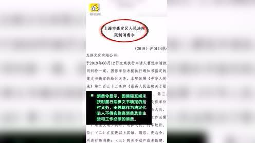 王思聪新增对外投资,入股北京一企业管理公司