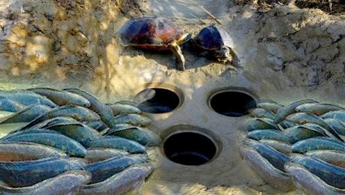 奇葩小伙用陶罐捕鱼,抠门的连诱饵都不放,大鱼竟还主动往里钻!