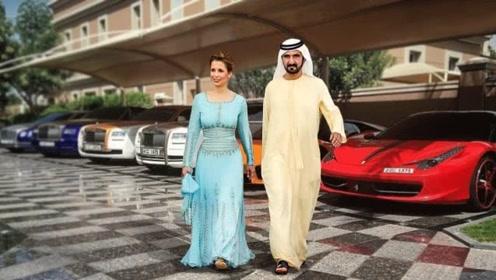 阿拉伯土豪养宠物、办婚礼的奇葩方式,原来他们都是这样花钱的