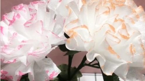 过期的纸巾这样做,家里再也不用买花儿了!