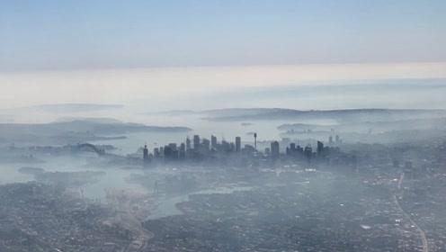 澳洲火灾引起悉尼重度雾霾 空气污染指数爆表堪比印度德里