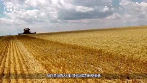 俄产百万吨大豆抵达中国,美国628个农场破产,俄再承诺提供土地!