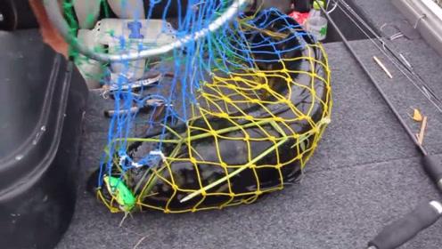 看完这个,你就知道为什么钓过鱼的人,都上瘾了