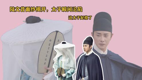 鹤唳华亭:陆文昔面纱揭开,太子瞬间沦陷,这太子妃稳了