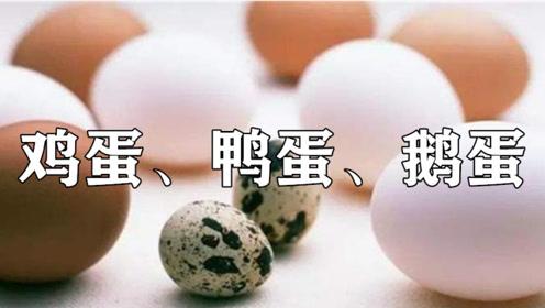 鸡蛋、鸭蛋、鹅蛋、鹌鹑蛋,营养差别这么大