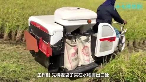 日本是如何收割水稻的收割打包一次成型,一天搞定20亩地!