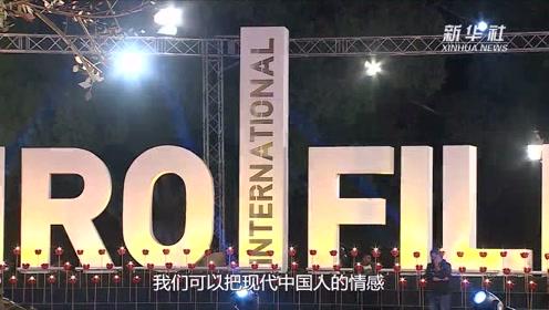 秦海璐专访视频
