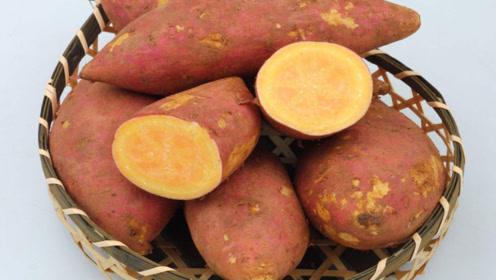 连续吃一星期地瓜土豆,身体会发生什么变化?听听营养师怎么说