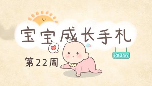 宝宝22周,开始学坐了,宝宝会从不同角度研究对方的脸部