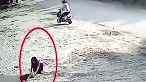 女孩突然向流浪狗走过去,监控拍下她的无耻举动
