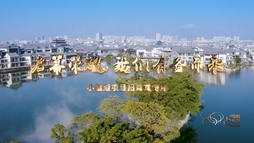 小桂湖项目招商宣传片
