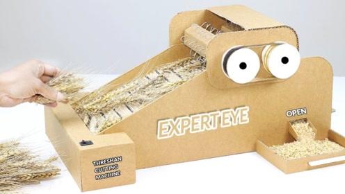 小伙用纸板自制小麦脱粒机 ,这动手技能不得不服!