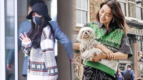 杨幂、刘雯、李易峰都在穿的费尔岛毛衣 到底哪里好?