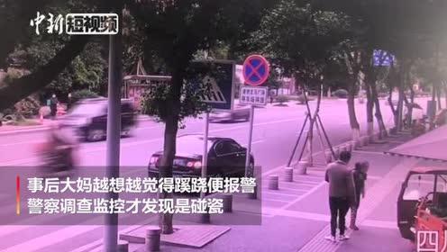 """四川一男子专挑宠物狗""""碰瓷""""警方正调查"""