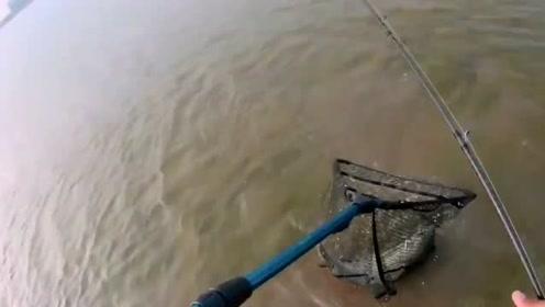 三十公分的野河里也藏有大鱼,钓友一下没注意差点就被拉下水了