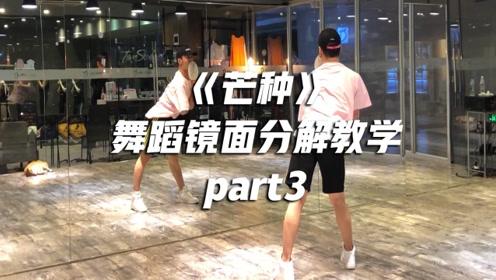 年会舞蹈推荐!中国风《芒种》舞蹈教学 第三部分