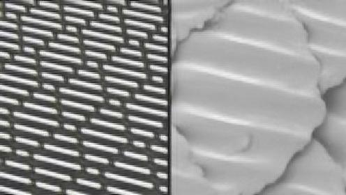 小鲨鱼塑料膜能有效隔绝细菌么?探秘罗永浩新产品的背后原理!