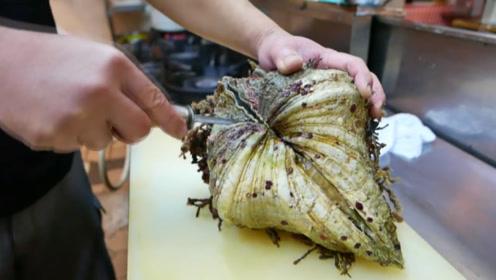 600元的巨型蛤蜊,还有它未消化的小龙虾,连壳一起做成刺身吃!