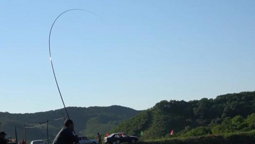 钓鱼:会钓的不会钓的都在上鱼,这次老板可赔了!