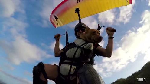 极限运动最佳剪辑4 云层上秀特技、美女在水下与鲨鱼共舞 太震撼