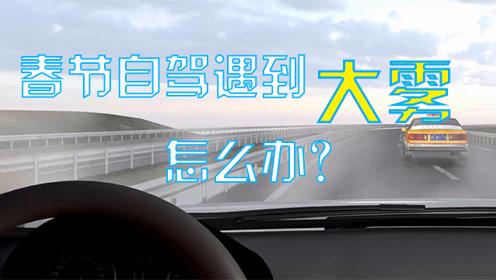 动画实解!春节自驾遇到大雾怎么办?这几招绝对管用!