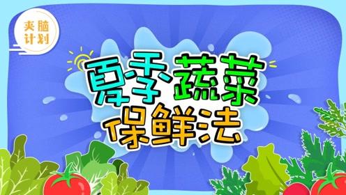 学会这三招蔬菜保鲜法,再也不用担心蔬菜变质!