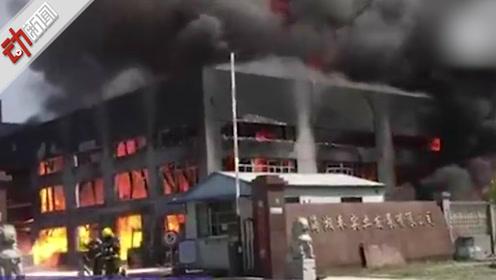 现场:上海奉贤一化工厂发生火灾 目前明火已灭暂无伤亡
