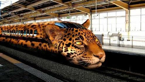 老外评选出世界上最快的12款列车,中国就占两位!