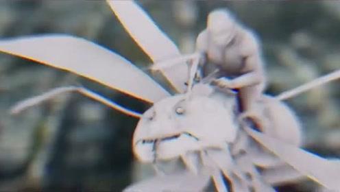 《蚁人2》幕后特效揭秘,到底怎样才能变大变小变漂亮?