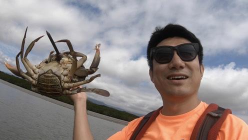 美味远胜鲍鱼龙虾,在澳洲比脸大的泥蟹遍地走,网友看完口水直淌