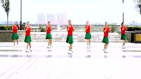 广场舞《花城姑娘》简单好学,大妈跳得真是太好看了