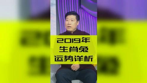 十二生肖2019年运势之生肖兔:事业财运双丰收!