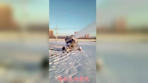 看看这雪量,炮式造雪机快速造出滑雪场