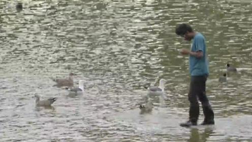 小伙低头玩手机不慎坠入河中,却行走在水面上,路人纷纷看傻眼