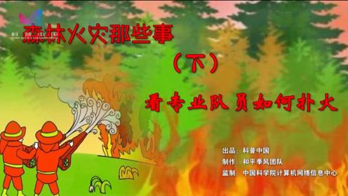 森林火灾那些事3 看专业队员如何扑火