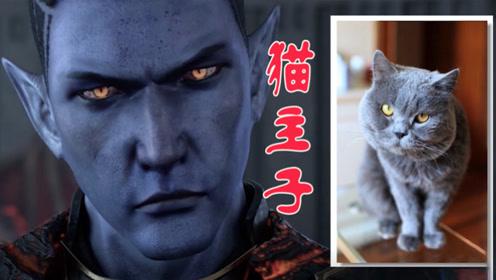 【不存在的雄兵连】霸气女王变猫奴 蓝猫淘气互不服