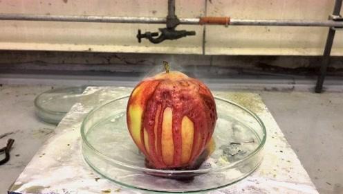 当浓硫酸淋到苹果上,发生了什么?太可怕了心疼苹果三分钟!