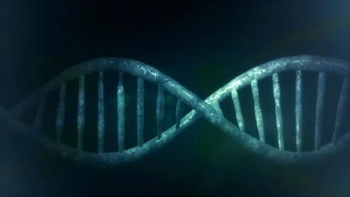 大胆科学 - 如果你的基因消失了!?
