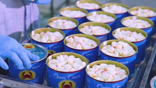 一罐螃蟹罐头究竟装多少只螃蟹?镜头记录生产过程,发现猫腻