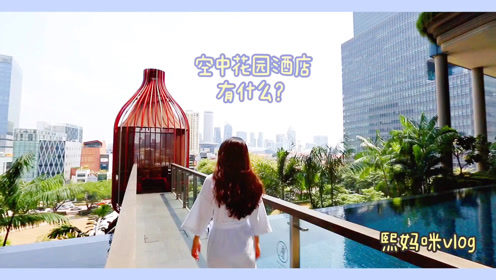 熙妈咪vlog:明星网红疯狂打卡,新加坡的绿洲花园