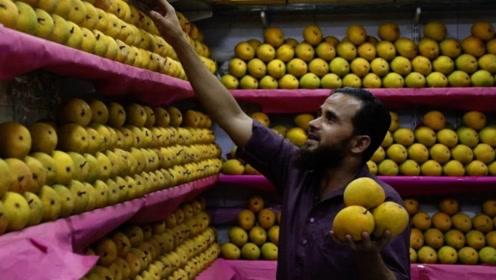 巴基斯坦水果卖不出,中国吃货赶紧接手,这个地方只能干羡慕
