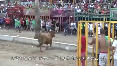 男子作死挑战公牛,下一秒悲剧了,镜头记录全过程!