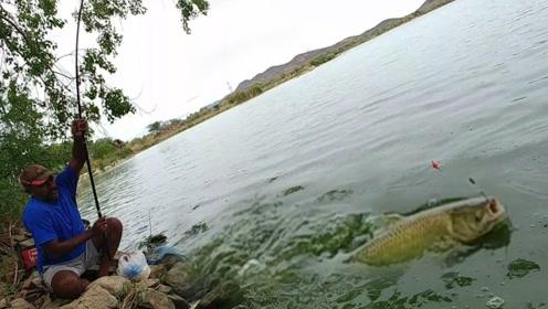 实拍印度人钓鱼,明明是野钓,却感觉像在鱼塘偷钓